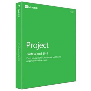 Project профессиональный 2016 ESD