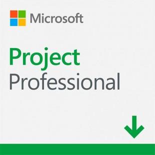 Project профессиональный 2019 ESD