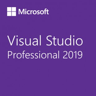 Microsoft Visual Studio Professional 2019 with MSDN