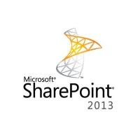 Microsoft SharePoint Standard CAL 2013 DvcCAL
