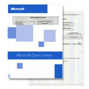 Microsoft Windows 8 GGS Pro