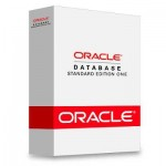 Oracle Database 11g Standard Edition One